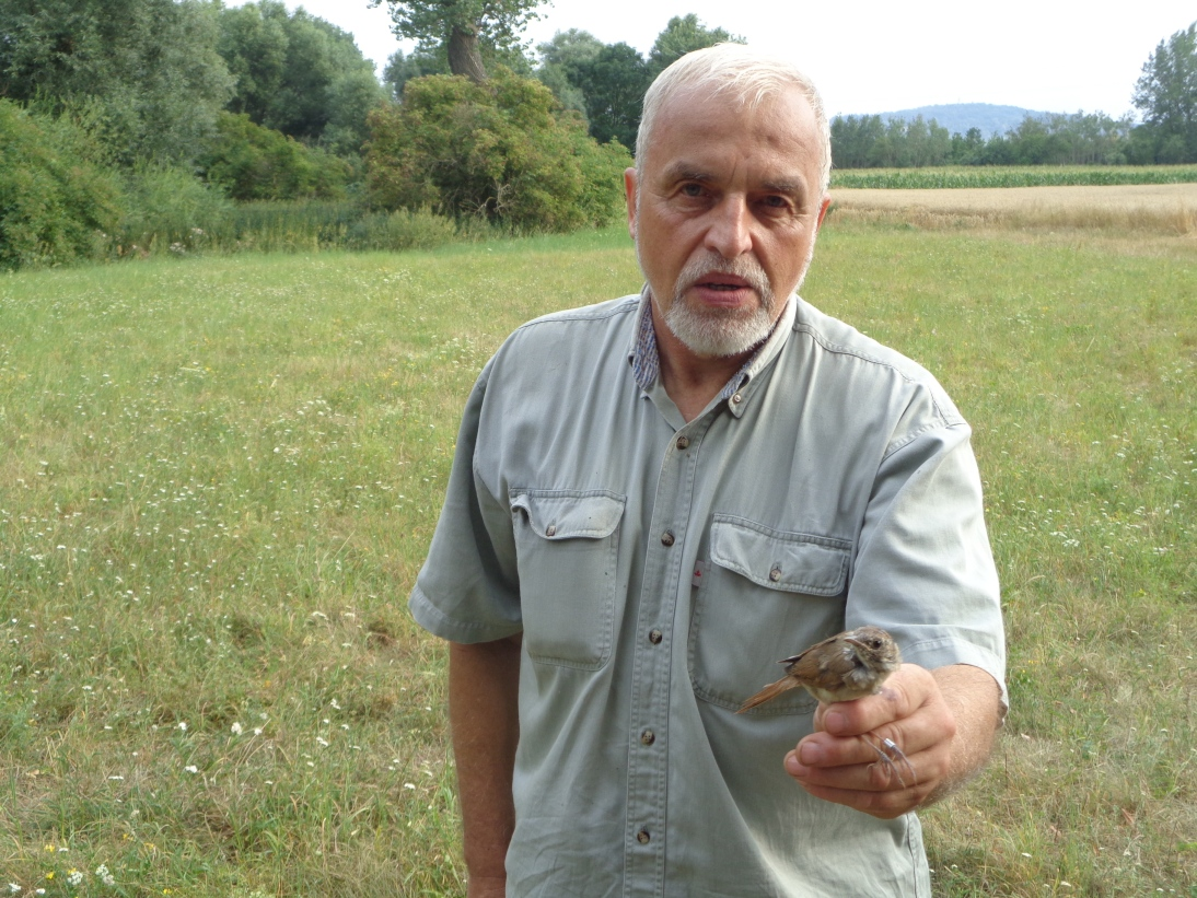 Ornitologové na louce, kterou oživujeme